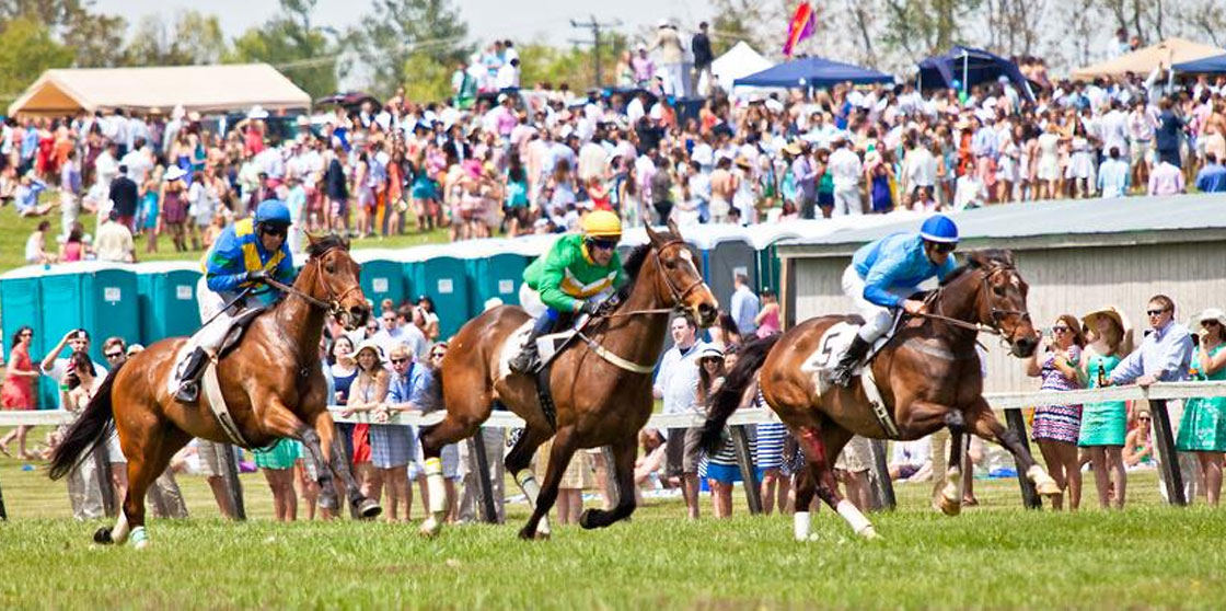 Foxfield races