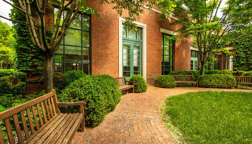 Law School garden
